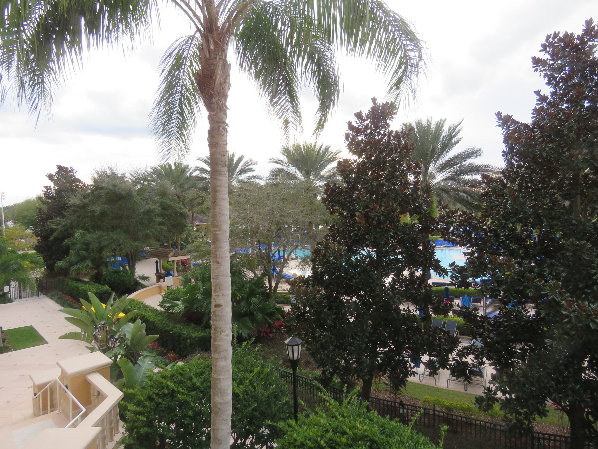 View of the grounds from our balcony